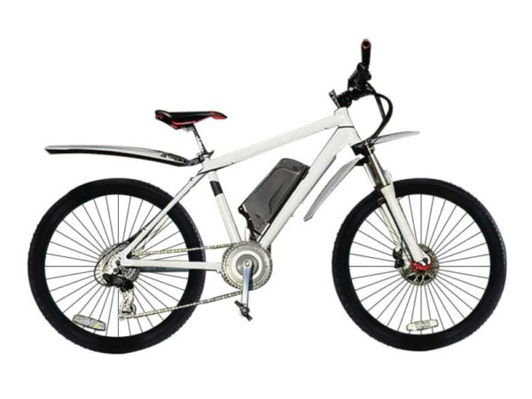 Электровелосипед - E-motions Snow Leopard