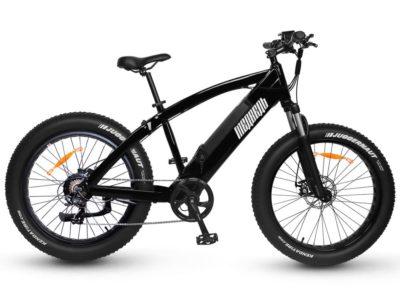 Электровелосипед - Электро фэтбайк Медведь 2.0 750