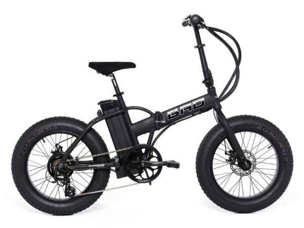 Электровелосипед - Электровелосипед Wellness Bad Dual