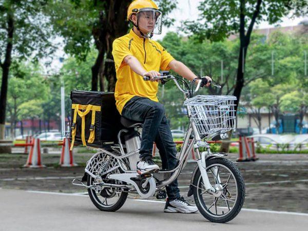 Купить delivery line v12 (12ah 48v 350w, 20 дюймов)