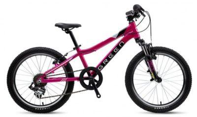 Велосипед зеленый 2019 кидс 20 (женский) (пурпурный)